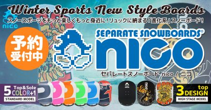 nico_top_2016_2
